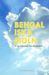"""Omslagsbild till """"Bengaliska moln""""."""